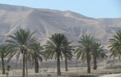 טיולים בישראל לתיירים