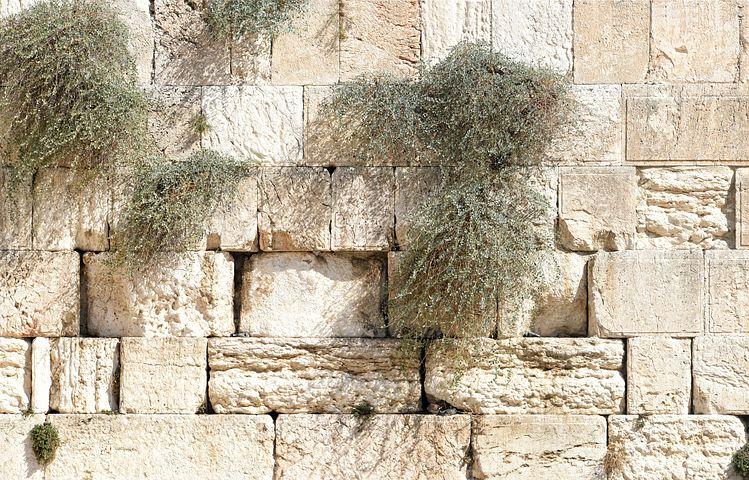 העולות עולות לירושלים