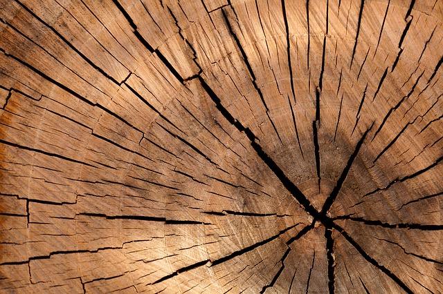 למי מה ואיך – מטבח מעץ מלא