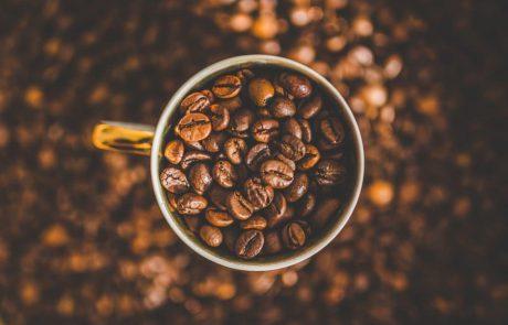 איך בוחרים פולי קפה?